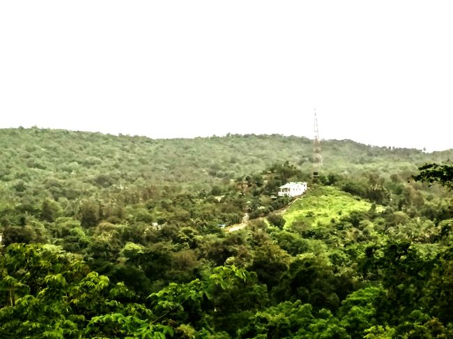 Holiday POV Yeoor Thane Green Green Green!