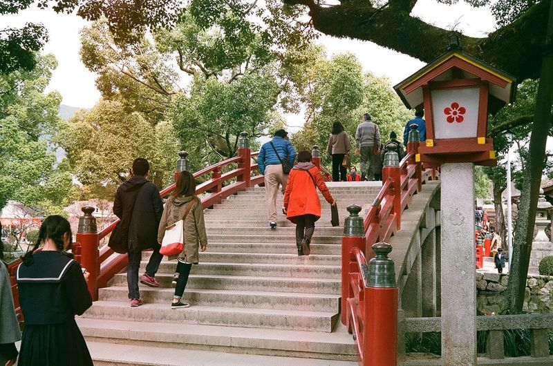 Dazaifu Tenmangu Shrine in Fukuoka, Japan Tree Rear View Medium Group Of People The Way Forward Real People Steps Outdoors Women Men Steps And Staircases Day Cultures Architecture People Sky Adult Adults Only Filmcamera Olympus 35DC Olympus 35dc Shrine Dazaifutenmangu Dazaifu Shrine