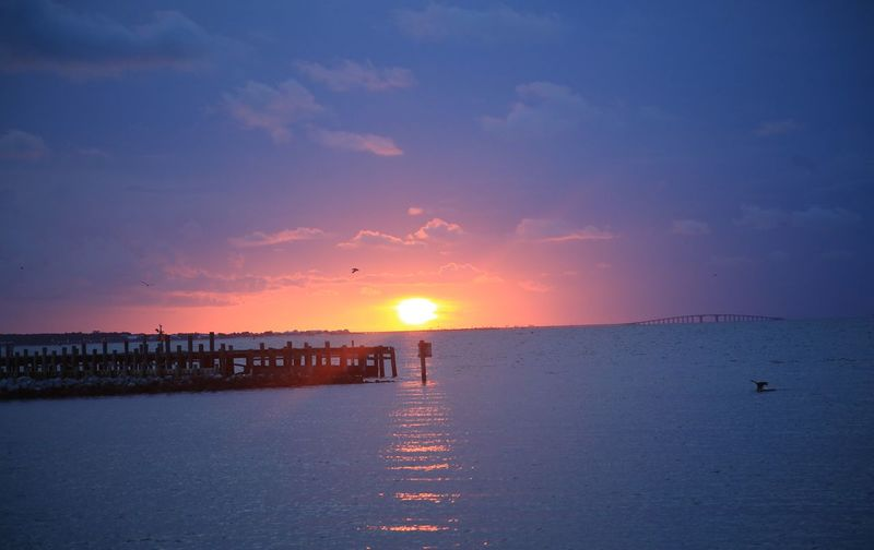 Pelican Alabama Mobile Bay Fort Morgan Ocean Clouds Pier Water Sunset Sky Sea Beauty In Nature Scenics - Nature Sun Bird Nature Tranquility Tranquil Scene No People Horizon Over Water Horizon Sunlight Idyllic Reflection Animal Themes Outdoors The Great Outdoors - 2018 EyeEm Awards
