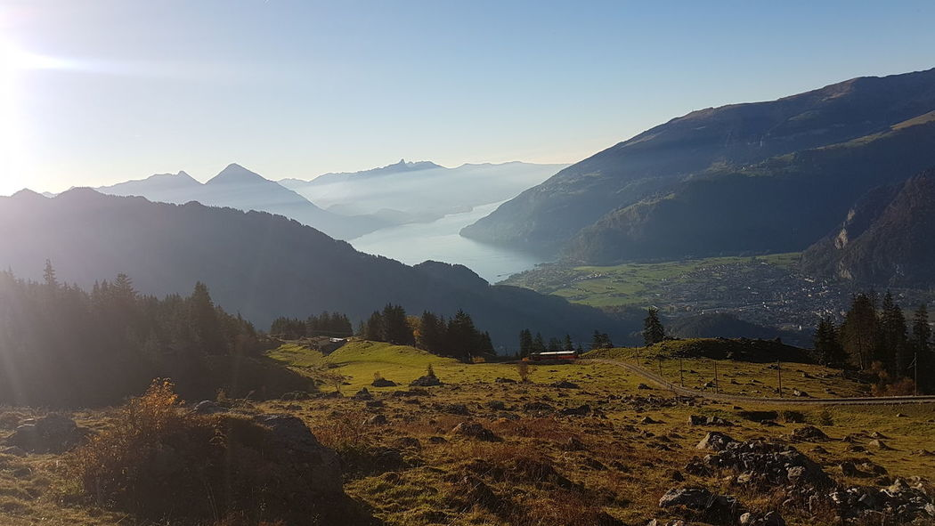 EyeEm Selects Fog Mountain Beauty In Nature Rural Scene No People Landscape Outdoors Freshness Beauty In Nature Thunersee Mountain Range Switzerland Tourist Destination Schynige Platte Nature Travel Destinations Swiss Mountains