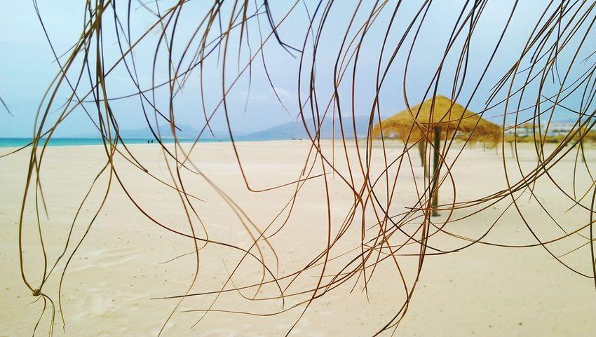 Tarifa Tarifabeach Tarifa Spain Sunbrella Beach Atlantic Ocean