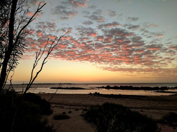 Sunset Sea Horizon Over Water Water Dramatic Sky Outdoors Nature Cloud - Sky Sky Beauty In Nature Scenics No People Beach Tree Vacations Sand Beauty In Nature Dramatic Sky Tranquility Eyeem Market Tranquil Scene Beauty Showcase April Yorke Peninsula South Australia