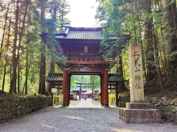 not a torii gate... || Temple Hopping Travelling Travels Travel Traveling Explore Nippon