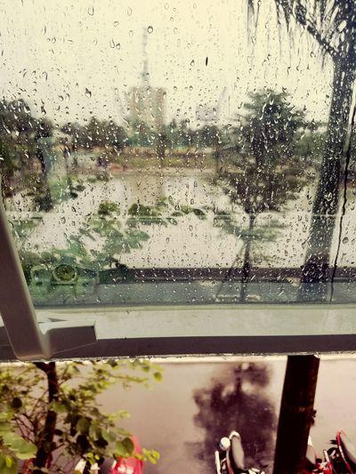 Window Glass - Material Wet Weather Looking Through Window RainDrop No People Tree Sky