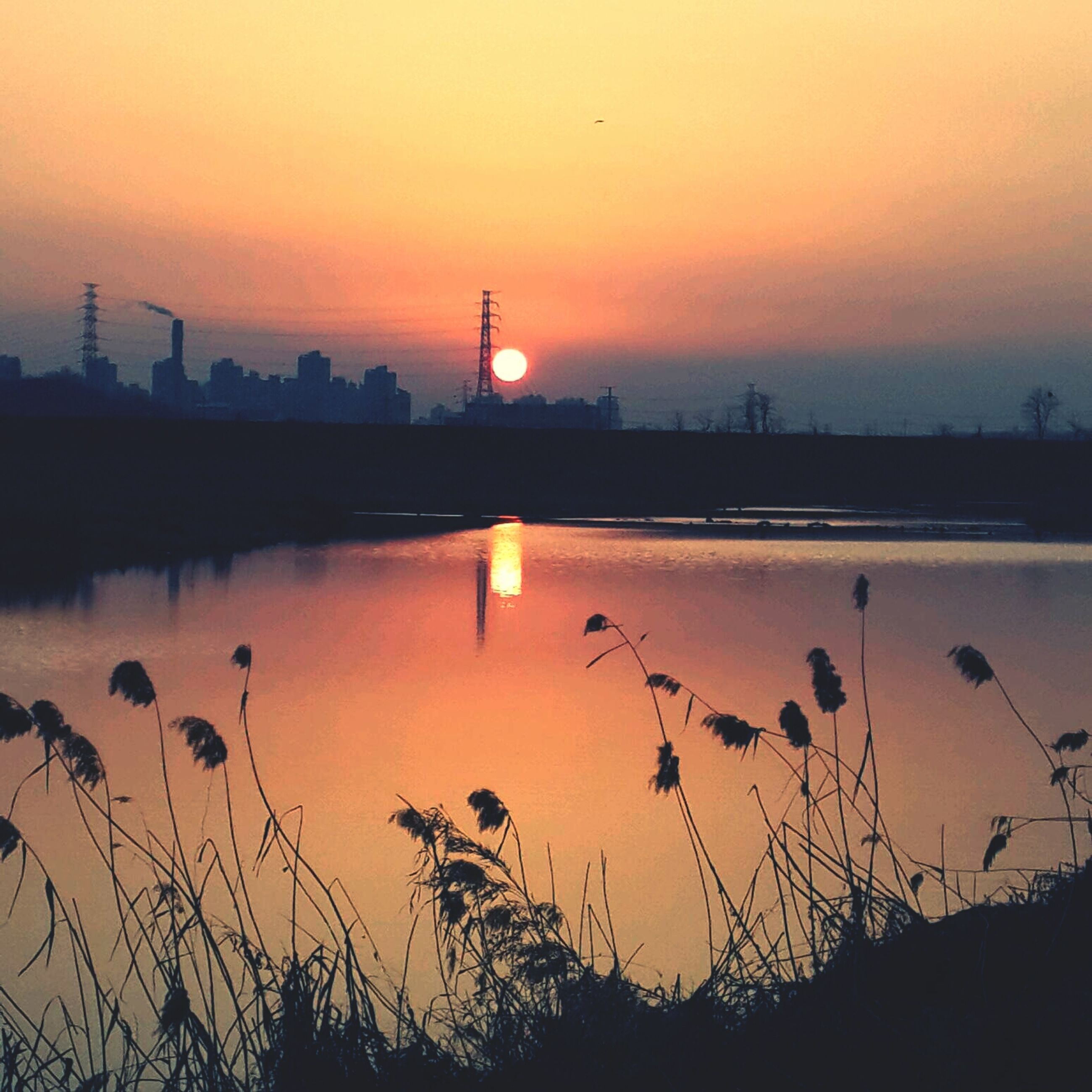 sunset, orange color, silhouette, water, scenics, tranquil scene, tranquility, beauty in nature, nature, idyllic, sky, sun, clear sky, reflection, lake, electricity pylon, river, plant, copy space, outdoors