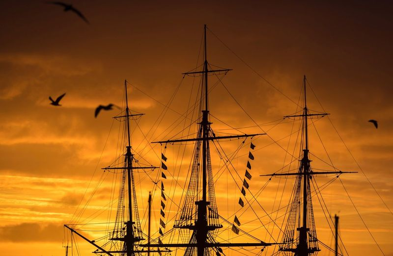 The sun goes down behind the HMS Trincomalee in Hartlepool marnia Sunset Transportation Silhouette Sky Nautical Vessel Mast Bird No People Outdoors Cloud - Sky Rigging Tall Ship Seagull Seagulls Seagull And Sky Hms Trincomalee Hartlepool Marina Nature Day