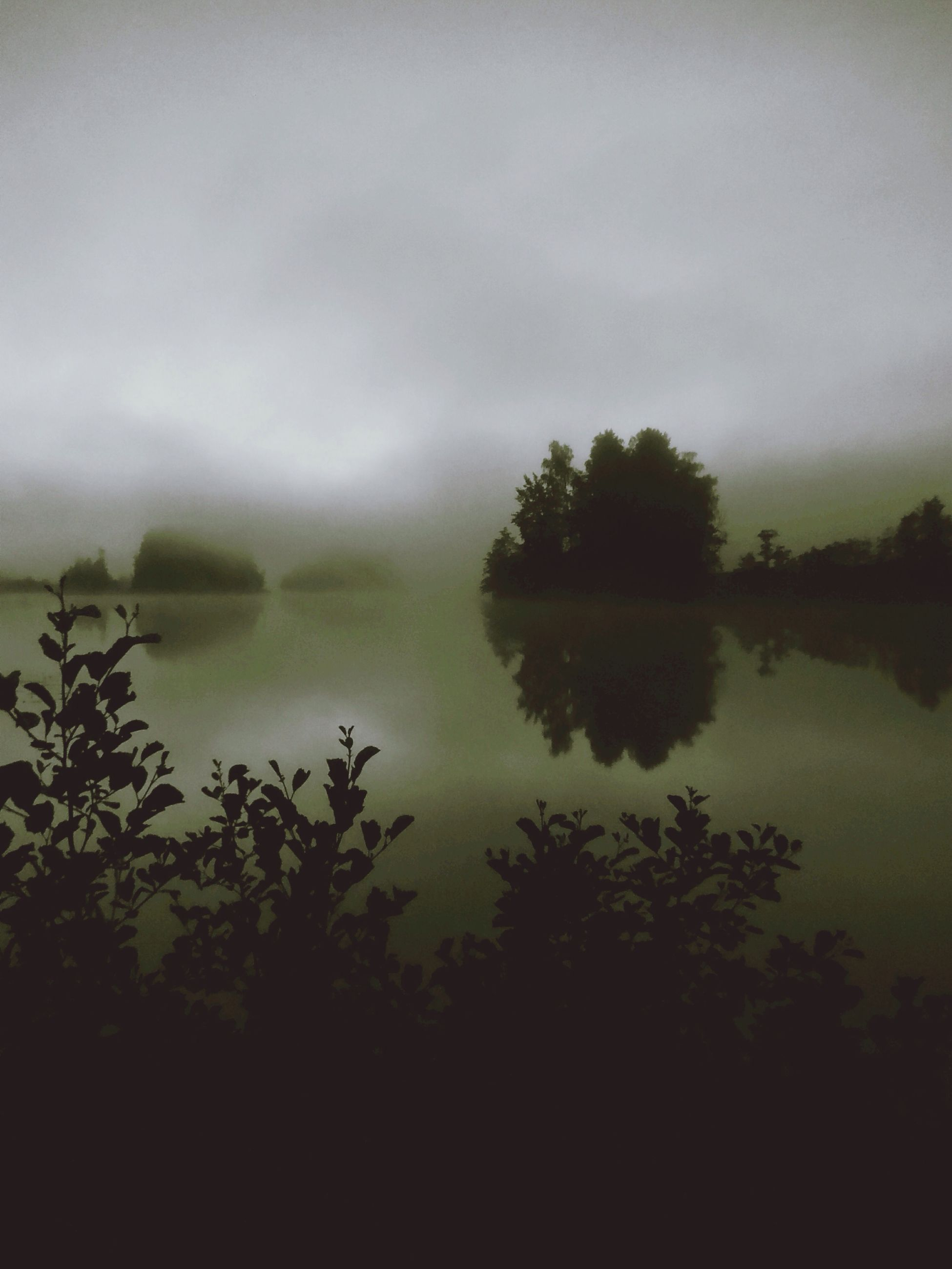 tranquil scene, tranquility, tree, scenics, lake, water, beauty in nature, sky, nature, reflection, silhouette, idyllic, fog, growth, cloud - sky, calm, weather, non-urban scene, dusk, outdoors