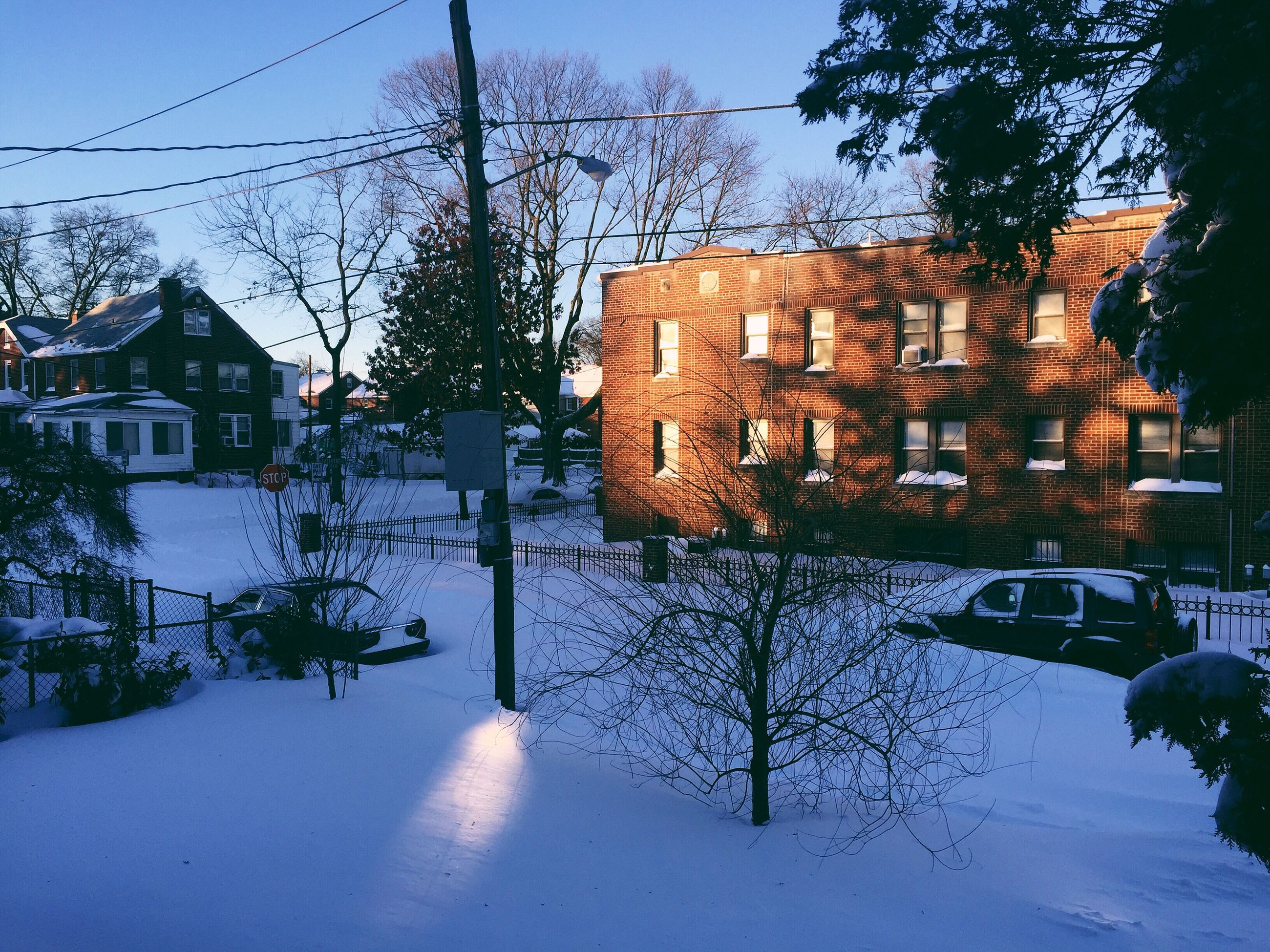 building exterior, architecture, built structure, tree, residential building, house, residential structure, sky, bare tree, power line, city, building, street, sunlight, outdoors, no people, day, shadow, clear sky, window