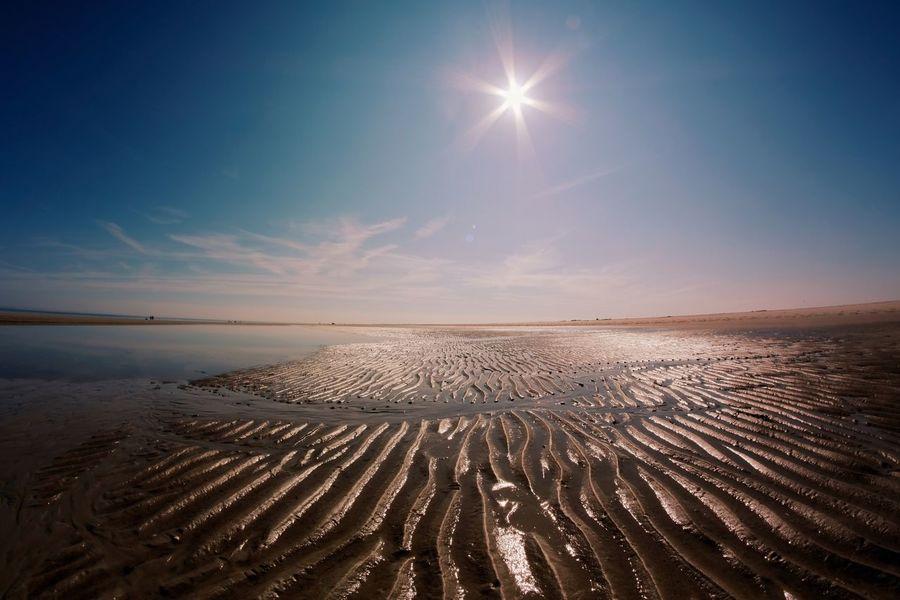Wattenmmeer Spiekeroog  Ostfriesland Landschaft Nordseeküste EyeEm Selects Sky Scenics - Nature Beauty In Nature Land Nature Water Tranquility Tranquil Scene Sunlight Horizon Over Water Beach Horizon Sun Landscape Sand Sea Blue