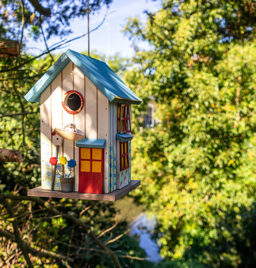 Low angle view of birdhouse on tree against building