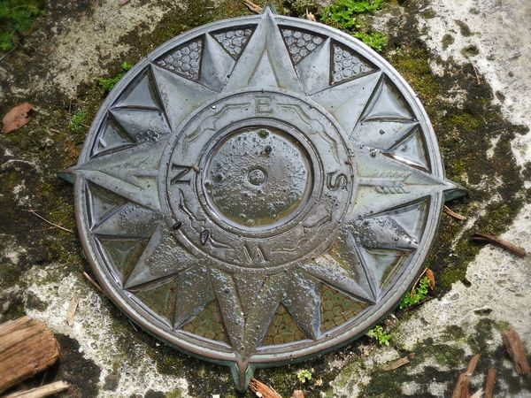 Metal Object Engraved Metal Compass Water Moss Mulch Stone On The Ground In The Garden Photography