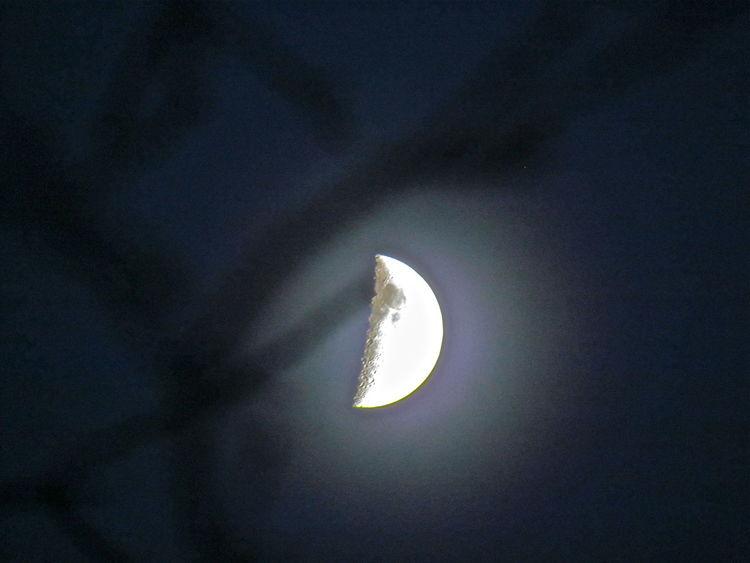 Goodnight Moon Halfmoon Illuminated Moon Moon Shadow Nightshot Nightsky