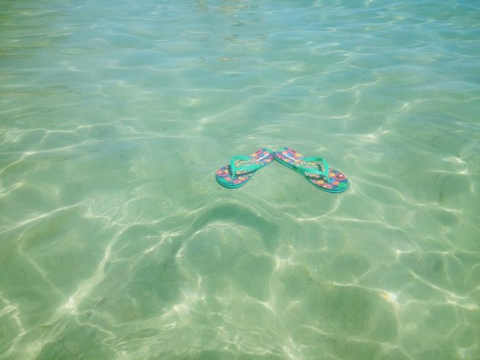 Water Sea High Angle View Floating On Water Summer Outdoors Rippled Beach Nature Swimming Pool Day No People Beauty In Nature UnderSea