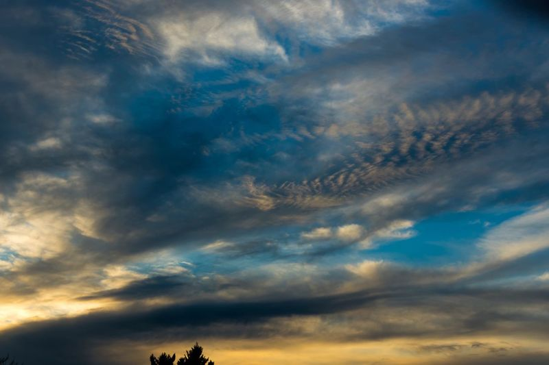 Wild beauty. Sky Cloud - Sky Nature Cloudscape Scenics Beauty In Nature Dramatic Sky Sunset Storm Cloud Day 365project