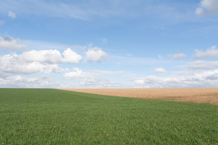 Agriculture Rural Scene Sky Landscape Blue Green Color Field Cloud - Sky No People Outdoors Day Simplicity Beauty In Nature Simple Photography Field Eye4photography  Minimal