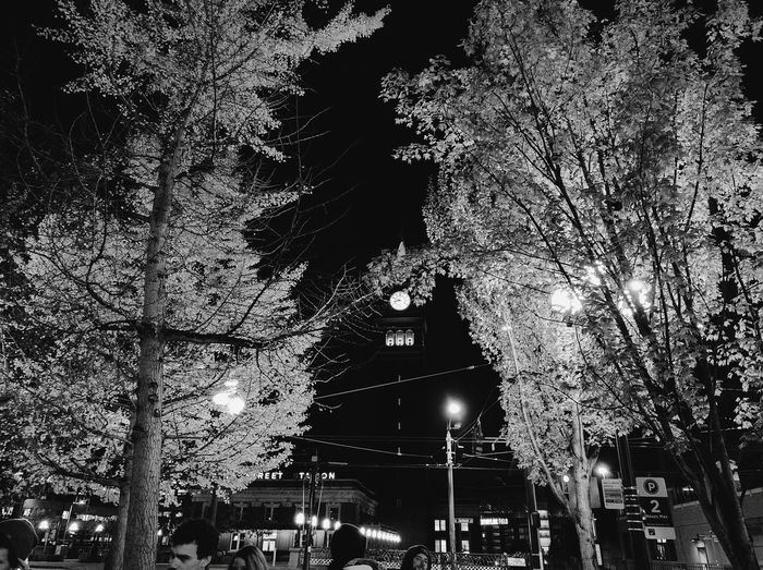 Seattle Pioneer Square Video Shoot Raz Simone First Eyeem Photo Black And White Trees Night