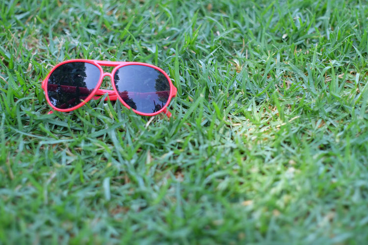 Sunglasses in the grass California Day Eyeglasses  Field Grass Green Color Nature No People Outdoors Pair Red Sunglasses USA