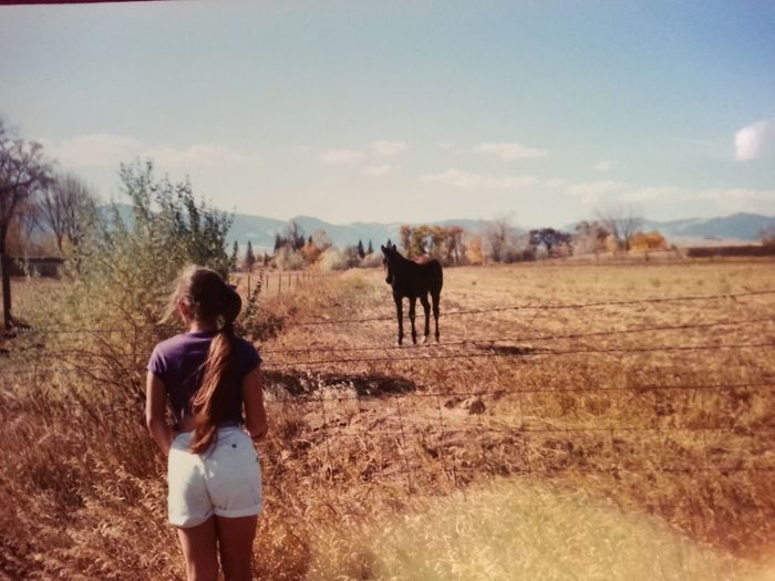 Pit stop for a pet Horse Girl Fields Field Long Hair Ponytail Nature Animals Approaching Approach Roadtrip Pitstop