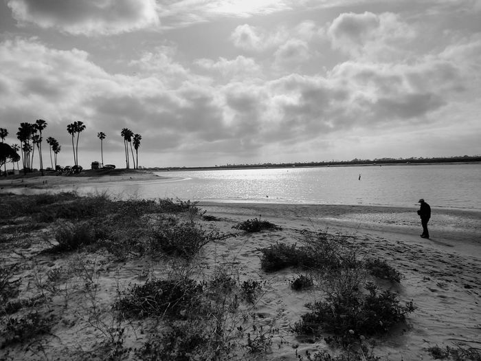 Lonesome Alone Solitude Beach Black And White Black & White B&w Walking Beach Walk Lonely Lonely Wanderer Lonely Walk Seaside Ocean Black And White Beach California San Diego Southern California Phone Photography Palm Trees