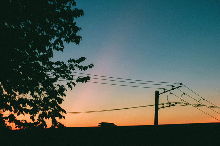 Beauty In Nature Cable Clear Sky Day Low Angle View Nature No People Outdoors Silhouette Sky Sunset Tree