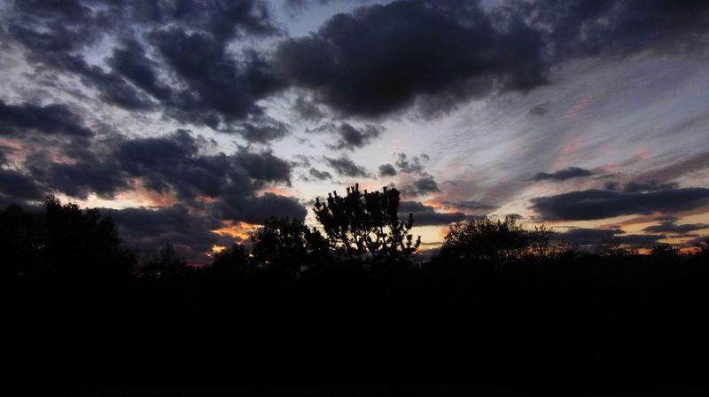 Nature Cloud - Sky Beauty In Nature Sky Scenics Sunset Silhouette Tree Outdoors Storm Sunbeam No People Day Sunrise_Collection Sunlight Nature Tree Alexander Rolsen / EyeEm Landscape sunset sun clouds skylovers sky nature beautifulinnature naturalbeauty photograph @RolsenStudios @AlexanderRolsen y landscape