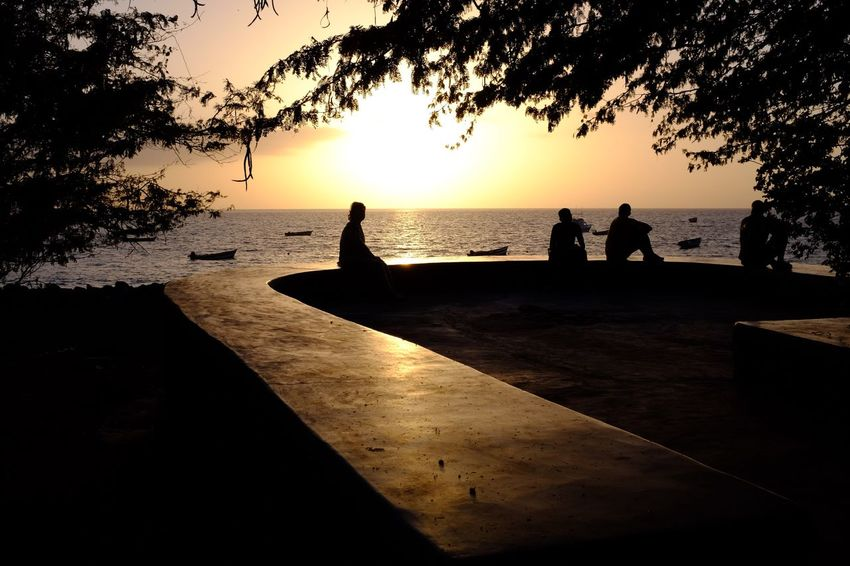 Real People Sunset Silhouette Sea Water Leisure Activity Lifestyles Tree Sky Nature Scenics Beauty In Nature Men Outdoors Day