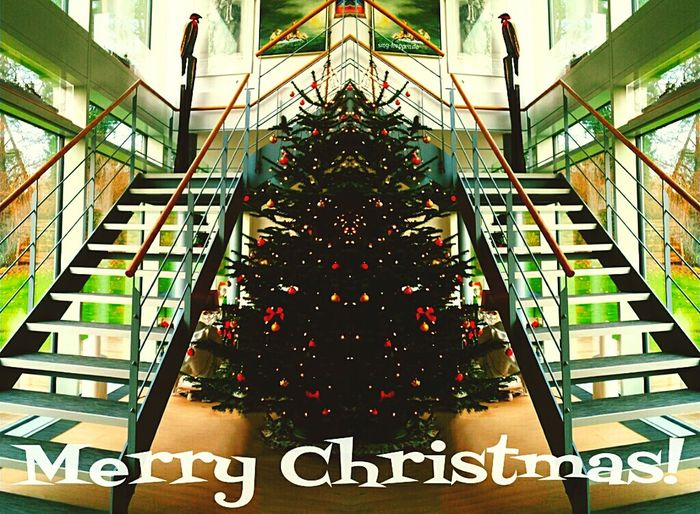 We wish you a Merry Christmas! Hope you found a awesome Xmas Tree and have time for a lot of Popular Photos Enjoy Relaxe & Happy Holidays! Tadaa Community ??✔ Getting In Touch Walking Around Eye4photography  Enjoying Life Smgtreppen Www.smg-treppen.de