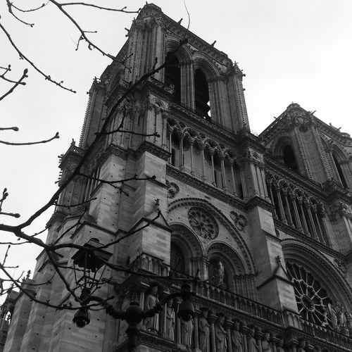 Notre Dame De Paris Architecture Building Exterior History No People Cultures City Blackandwhite Black & White Black And White Photography Paris Parisian Cliché Parispics NotreDameCathedral Cathedral