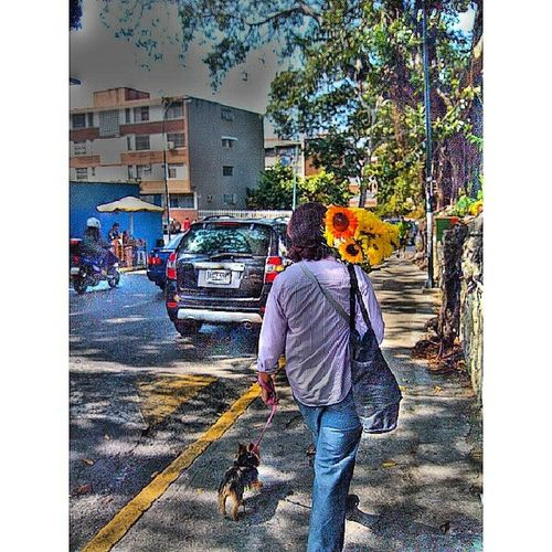 Ella va. Fernandoluna . Fotografosvenezolanos . Instagramers . Igersmiranda . igersmaracay. igersaltosmirandinos. instavenezuela. insta_ve. instaphoto. urbangangfamily. venezuelafotos_. venezuelaforum. ig_caracas. photoblipoint. gangfamily. streetphotovenezuela. streetphotography. gf_ve. instamoment. venezuela_captures. gang_family. ciudad_ve. galeríavzla.