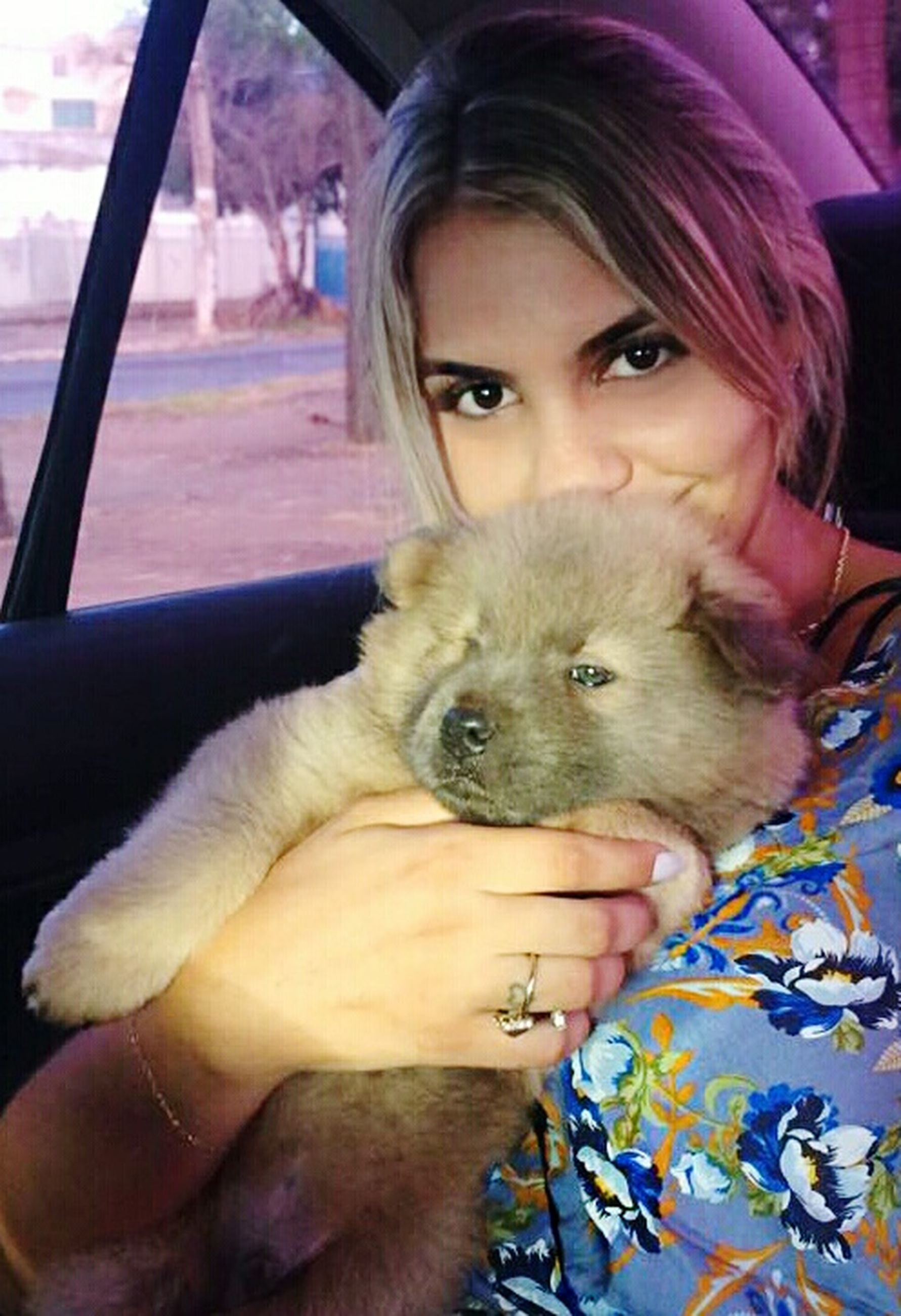looking at camera, portrait, real people, pets, lifestyles, one animal, one person, leisure activity, domestic animals, dog, animal themes, front view, mammal, bonding, pet owner, home interior, indoors, close-up, young women, day, young adult, hugging, pomeranian