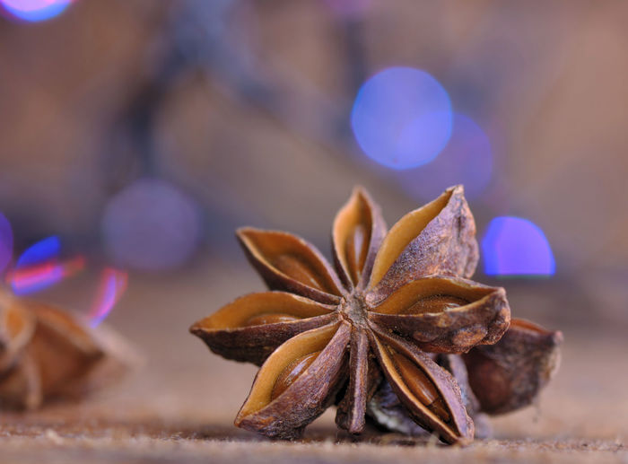 Celebration Holidays Backgrounds Blur Lights Bokeh Brown Close-up Dry Focus On Foreground Food Food And Drink Freshness Ingredient Purple Shape Spice Star Anise Star Shape Still Life Table