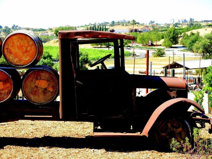 Horses Old Trucks Farm Equipment Farm Transportation Old Furnature Old Tractor Grills Old Tractor Seats Vineyard Wine Dogs Winery Equipment Winery Memorabilia