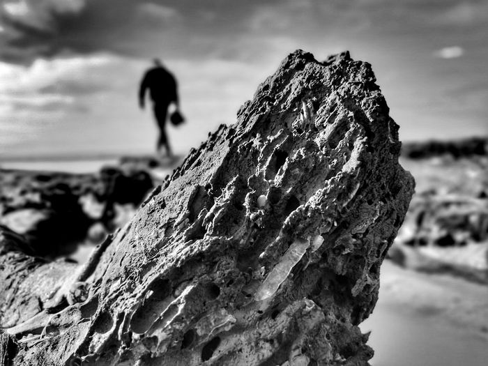 Close-up of rock on rocks