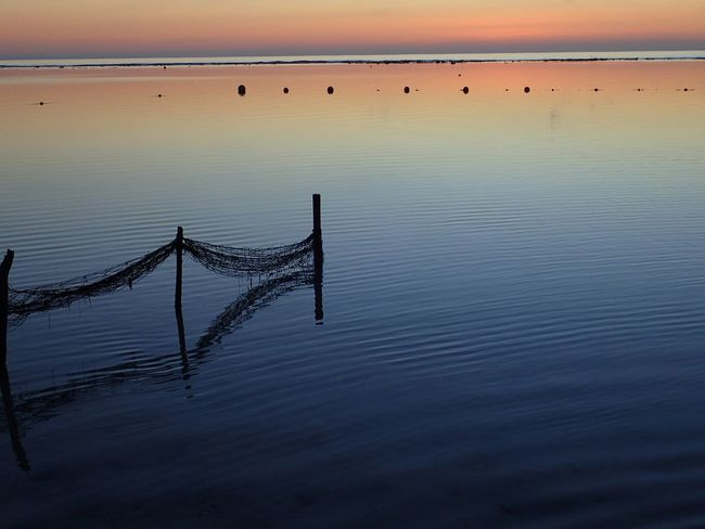 EyeEm Selects Sunset SeaPier Silhouette Horizon Over Water Horizon Reflection Tranquil Scene Sun Sunlight Beach Outdoors Sky Fishing Tranquility Water No People Scenics Fishing Nets New On Eyeem Wanderlust CARIBBEANLIFE Shotzdelight Sunrise
