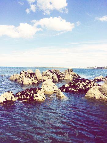Sea And Sky Seashore On The Rocks Swimming