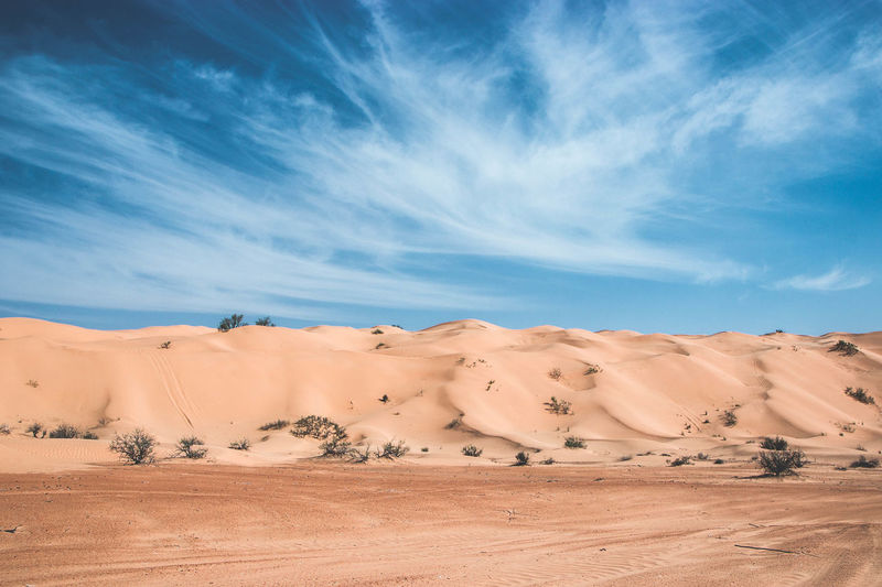 The big dune, Sahara Desert Scenics - Nature Sky Desert Environment Landscape Climate Sand Cloud - Sky Land Tranquility Arid Climate Beauty In Nature Non-urban Scene Nature Sand Dune Remote No People Blue Atmospheric Semi-arid Sahara Tunisia Dune Dunes Architecture 2018 In One Photograph My Best Photo