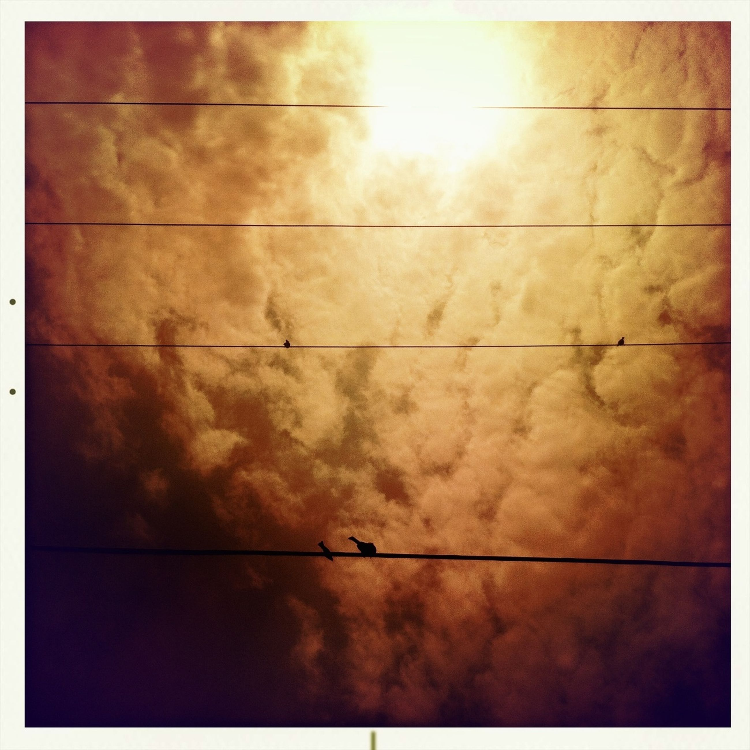 transfer print, low angle view, auto post production filter, sky, sun, power line, tranquility, cloud - sky, backgrounds, sunlight, nature, beauty in nature, sunset, scenics, full frame, electricity, no people, tranquil scene, outdoors, cloud