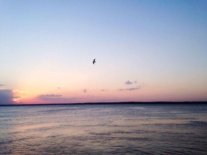 By The River Volga Eyem Best Shots