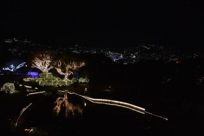 Night Lights Christmas Lights