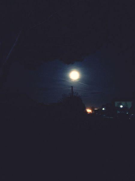 Full Moon Night Hello World ?