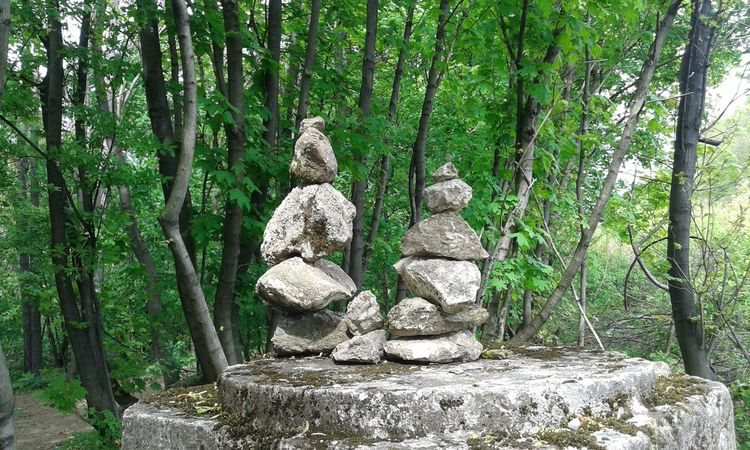 Green And Gray Springtime Stone Stone Family