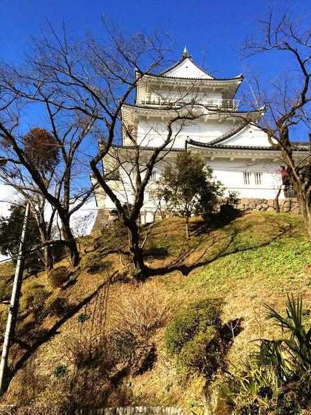 Japanese castle Odawara Castle firstFirst Eyeem Photo Odawara Castle / Japan Castle