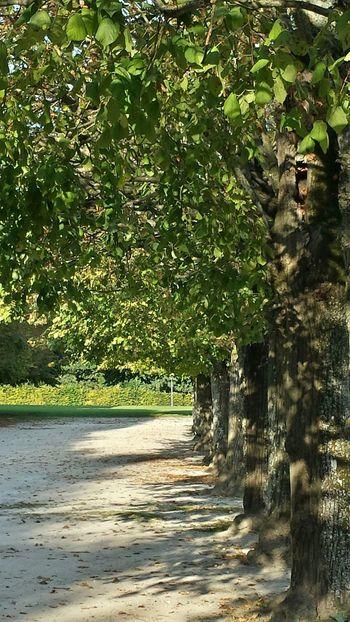 Travel gardens gardens!!! La chateau de Fontainebleau, France
