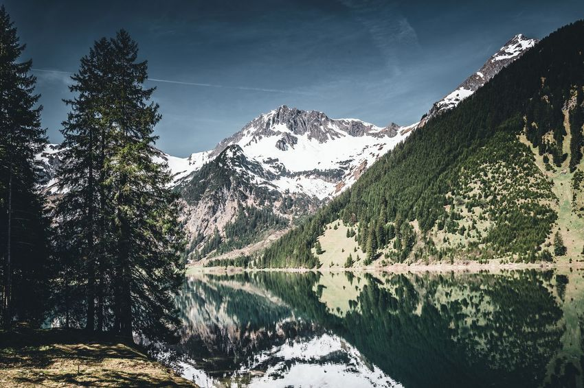 Am Vilsalpsee Wasser Bäume See Berge Alpen Alps Tannheimer Tal Austria Österreich Tyrol Tirol  Vilsalpsee Tree Plant Water Sky Beauty In Nature Nature No People Day Tranquility Scenics - Nature Mountain Growth Tranquil Scene Lake Outdoors Non-urban Scene Reflection Cloud - Sky