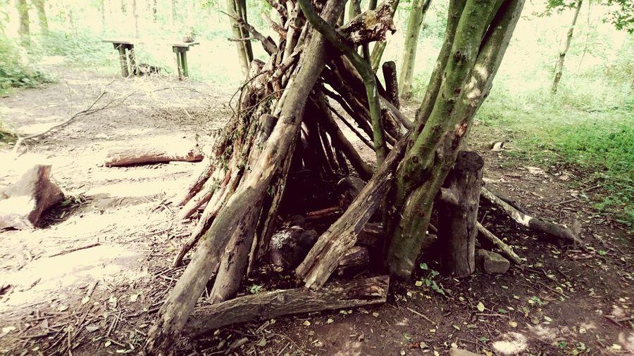 WoodLand Hideaways Deep In The Woods