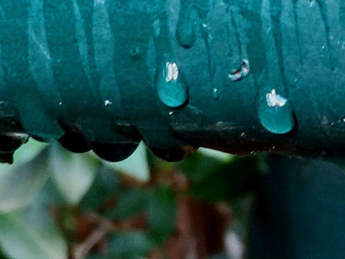 drip drip Afterrain Minimal Windows Of My World Water Close-up Rainfall Rain Under Wet Droplet