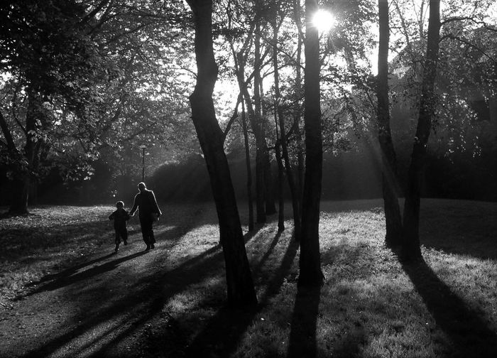 Bonding Day Dog Friendship Full Length Leisure Activity Lifestyles Light And Shade Light And Shadow Mammal Men Mother And Child Nature Norwich Outdoors People Real People Shadow Shadows Sunlight Togetherness Tree Two People Walking Wensum