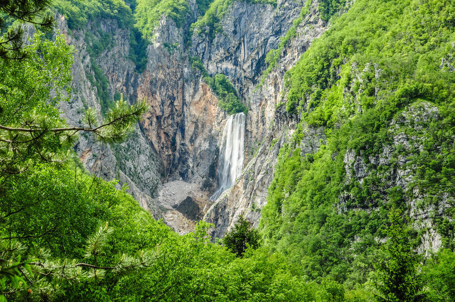 Backgrounds Beauty In Nature Bovec Close-up Day Forrest Green Color Growth Montains    National Park Nature No People Outdoors Rocks Slovenia Tranquility Tree Triglav National Park Triglavski Narodni Park (triglav National Park) Water Waterfall