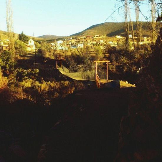Puentecolgante Canela Ivregion Chile vsco vscocam vsconature