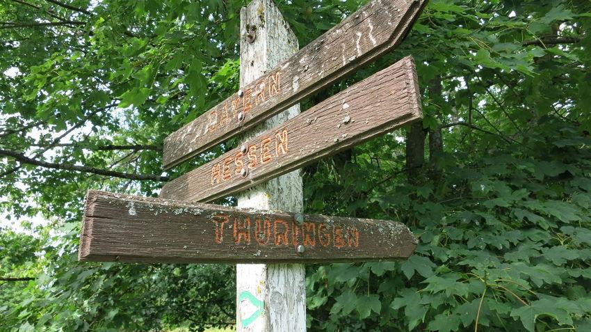 Bayern Dreiländereck Hessen Nature Outdoors Thuringen Tree Wood - Material Wooden